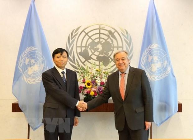 Le Vietnam contribue activement aux activites de l'ONU hinh anh 1