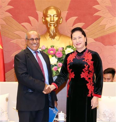 La presidente de l'AN recoit les representants du PNUD et de l'UNICEF hinh anh 2