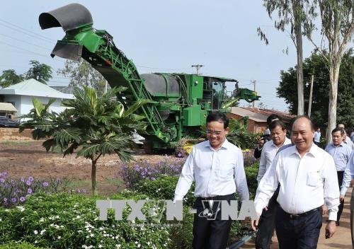 Le Premier ministre visite des etablissements agricoles a Tay Ninh hinh anh 1