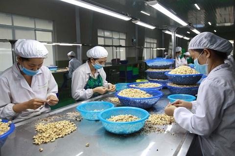 Defis pour l'exportation de produits agricoles vers l'Union europeenne hinh anh 1