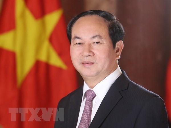 Le Vietnam souhaite promouvoir le developpement de ses relations avec l'Egypte hinh anh 1