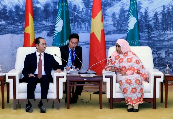 Le president Tran Dai Quang rencontre la presidente p.i de la Commission de l'Union africaine hinh anh 1