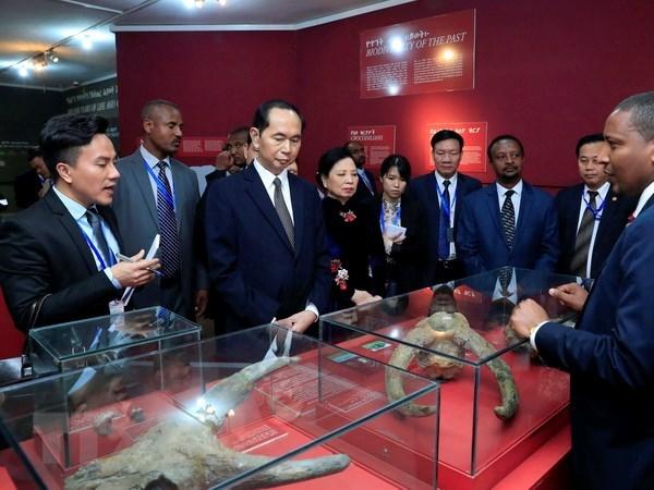 Le president Tran Dai Quang quitte l'Ethiopie pour l'Egypte hinh anh 1