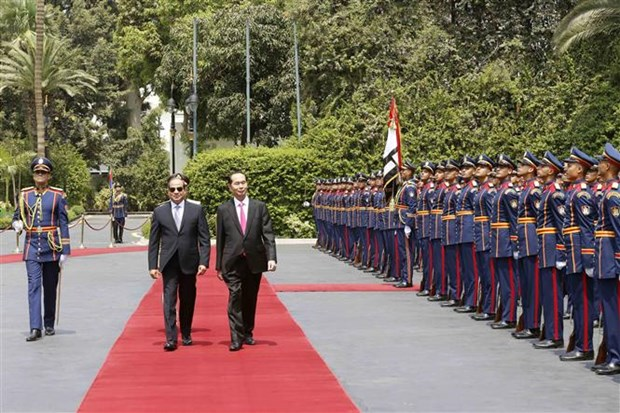 Le Vietnam et l'Egypte affirment leur volonte d'approfondir leurs liens hinh anh 1
