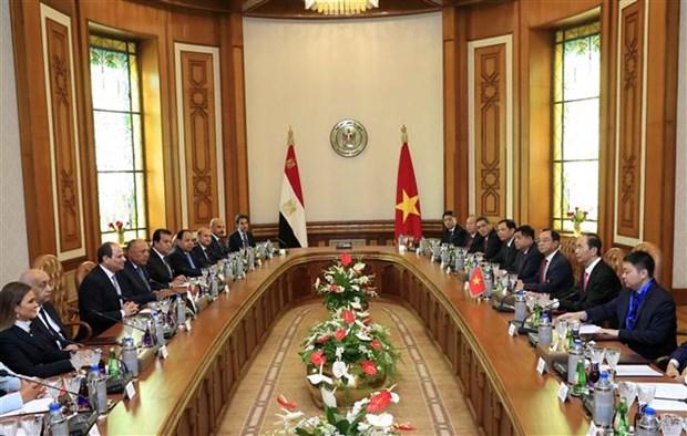 Le Vietnam et l'Egypte affirment leur volonte d'approfondir leurs liens hinh anh 3