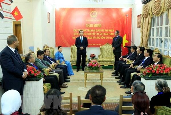Le president Tran Dai Quang visite l'ambassade du Vietnam en Egypte hinh anh 1
