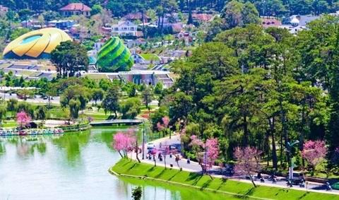 Sur les Hauts Plateaux du Centre, le tourisme fleurit a Lam Dong hinh anh 2