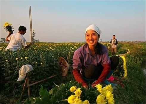 Les femmes au travail: les couleurs de la vie en grand format hinh anh 2