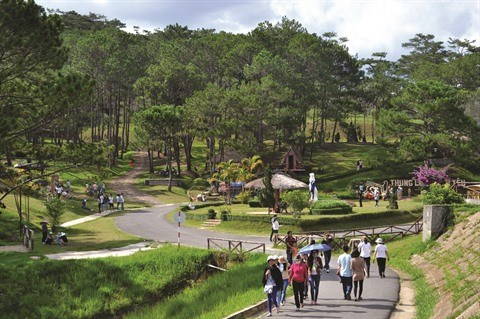 Sur les Hauts Plateaux du Centre, le tourisme fleurit a Lam Dong hinh anh 1