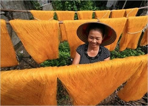 Les femmes au travail: les couleurs de la vie en grand format hinh anh 4