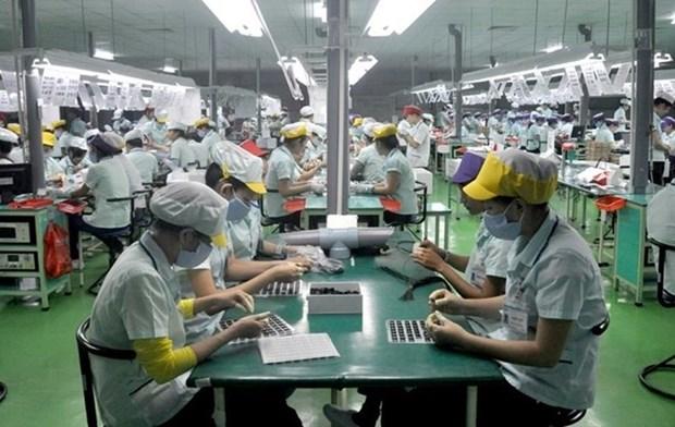 Importance des investissements etrangers pour l'economie vietnamienne hinh anh 1