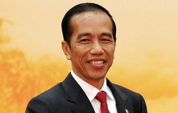 Le president indonesien Joko Widodo effectuera une visite d'Etat au Vietnam hinh anh 1