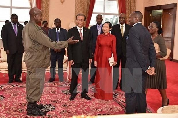 Le Vietnam et l'Afrique s'orientent vers une cooperation efficace hinh anh 1