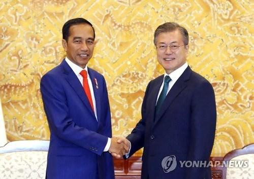 La R. Coree et l'Indonesie discutent des moyens d'intensifier le partenariat strategique hinh anh 1