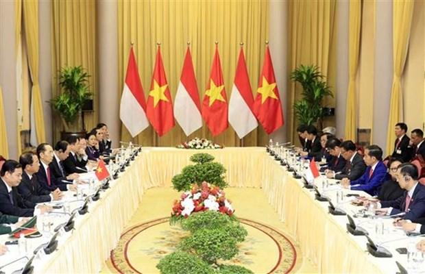 Entretien entre les presidents vietnamien Tran Dai Quang et indonesien Joko Widodo hinh anh 1