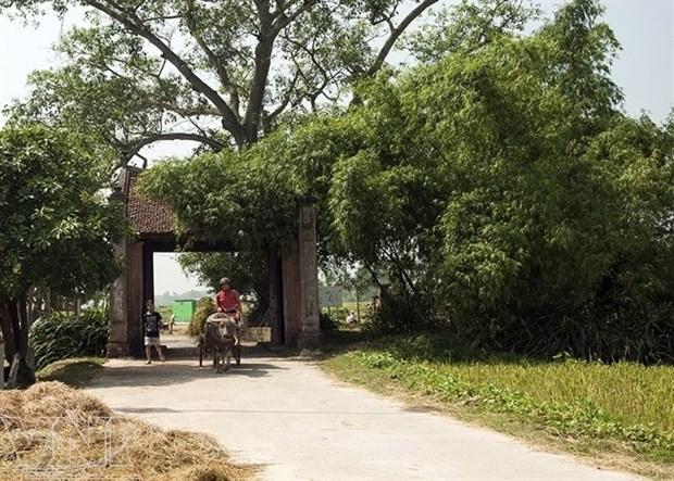 Des experts discutent de la protection du patrimoine de Hanoi hinh anh 1