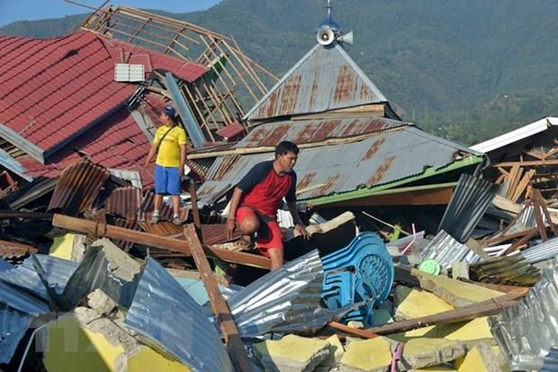 Seisme et tsunami en Indonesie : installation de refuges pour les survivants hinh anh 1