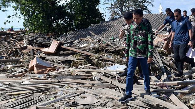 Seisme en Indonesie: le president Widodo inspecte les operations de secours hinh anh 1