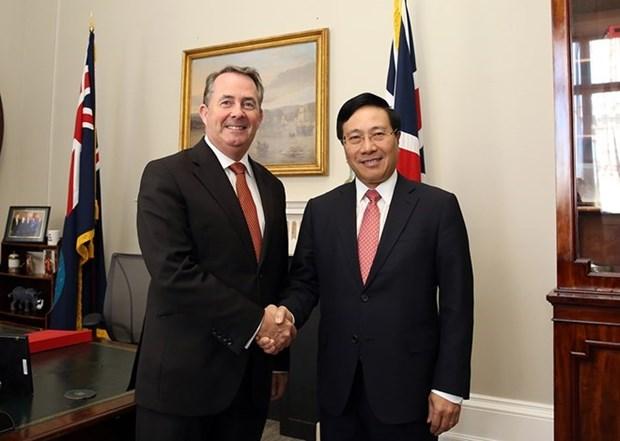 Le vice-PM et ministre des AE Pham Binh Minh en visite au Royaume-Uni hinh anh 1