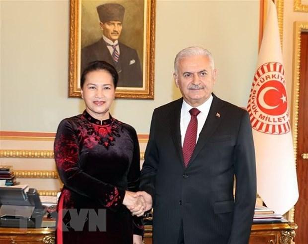 Le Vietnam et la Turquie promeuvent leur cooperation parlementaire hinh anh 1