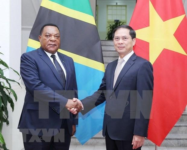 Le Vietnam souhaite cultiver les relations de cooperation avec la Tanzanie hinh anh 1