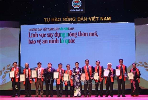 Vietnam : 63 paysans exemplaires mis a l'honneur en 2018 hinh anh 1