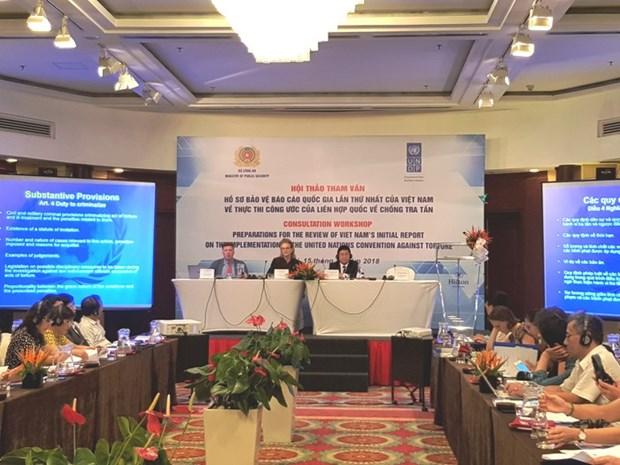 Parfaire le rapport sur l'execution de la Convention contre la torture hinh anh 1