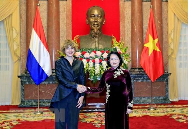 La presidente p.i du Vietnam Dang Thi Ngoc Thinh recoit de nouveaux ambassadeurs hinh anh 1