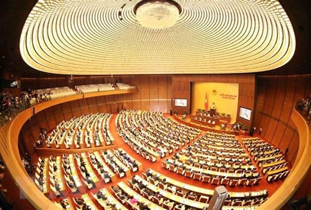 L'Assemblee nationale approuve la liste de 48 postes soumis au vote de confiance hinh anh 1