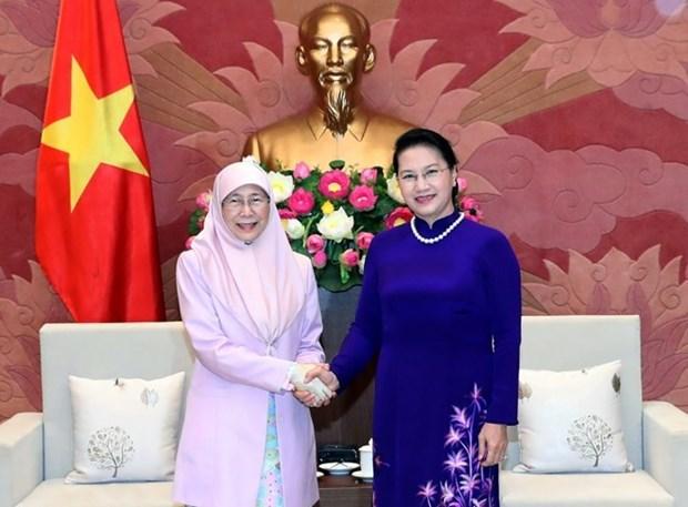 La presidente de l'AN Nguyen Thi Kim Ngan recoit la vice-PM malaisienne Wan Ismail hinh anh 1