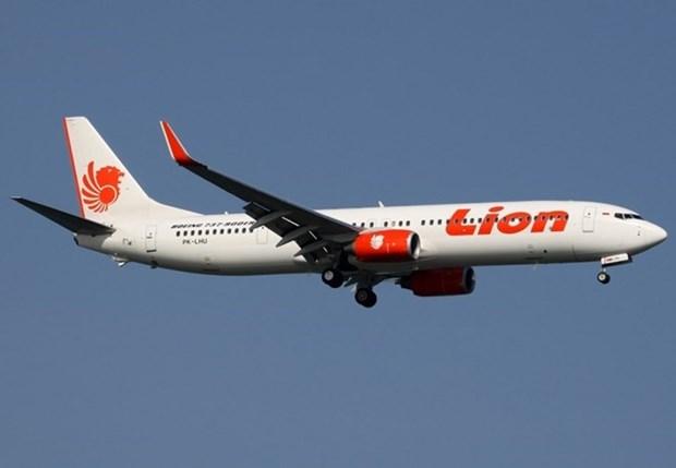Un avion de Lion Air s'abime en mer de Java avec 189 personnes a bord hinh anh 1