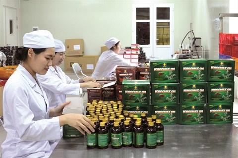 Les plantes medicinales, l'or vert de Kon Tum hinh anh 2