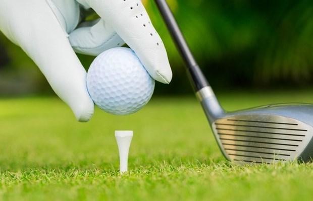 70 golfeurs au tournoi d'amitie Allemagne-Vietnam 2018 hinh anh 1