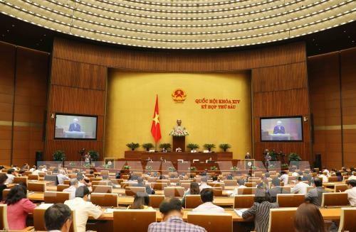 Troisieme semaine de travail de la 6e session de l'AN de la 14e legislature hinh anh 1