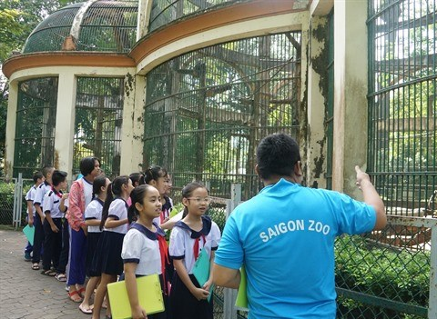 Ho Chi Minh-Ville : Apprendre en-dehors de la classe au niveau primaire hinh anh 1