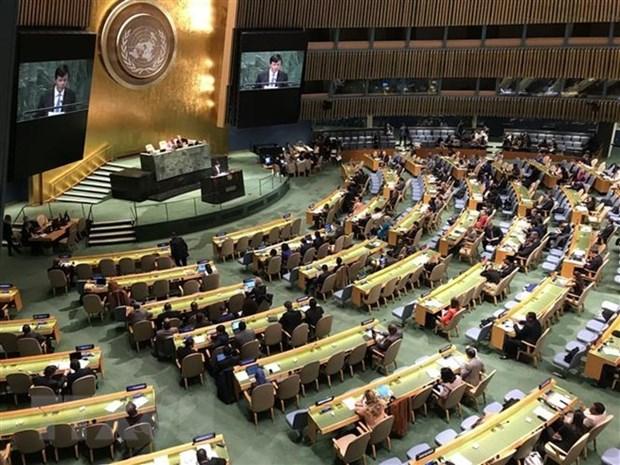 Le Vietnam se felicite de la resolution de l'ONU appelant a la levee de l'embargo contre Cuba hinh anh 1