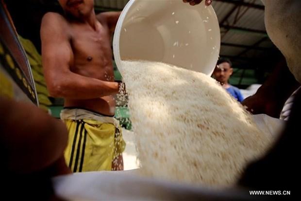 Les exportations de riz rapportent 435,96 millions de dollars au Myanmar hinh anh 1