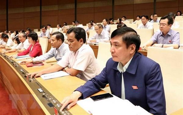 L'Assemblee nationale adopte la repartition du budget de l'Etat en 2019 hinh anh 1