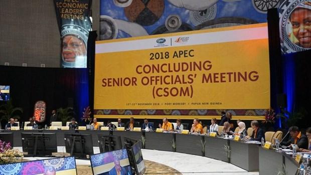 Le Vietnam participe a la CSOM 2018 de l'APEC en Papouasie-Nouvelle-Guinee hinh anh 1