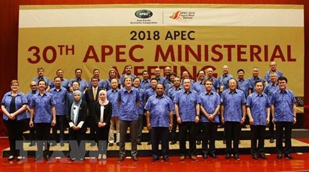 APEC : le vice-PM Pham Binh Minh present a une conference interministerielle hinh anh 1