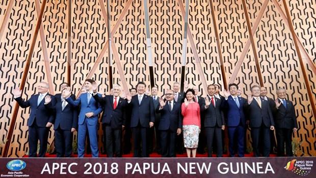 Les dirigeants de l'APEC discutent du libre-echange hinh anh 1