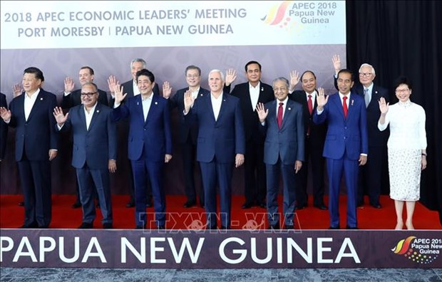 Le Vietnam a apporte ses contributions actives et responsables a l'APEC 2018 hinh anh 1