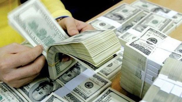 Les envois de devises froleraient 5 milliards de dollars en 2018 hinh anh 1