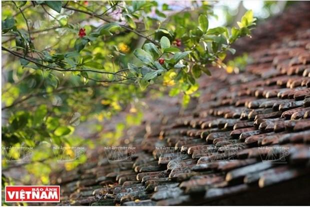 La maison la plus ancienne de Duong Lam dans la force de l'age hinh anh 3