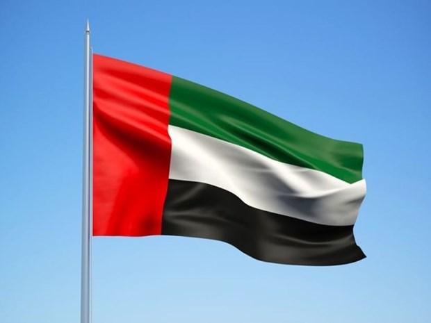 Celebration du 47e anniversaire de la Fete nationale des Emirats arabes unis a Hanoi hinh anh 1