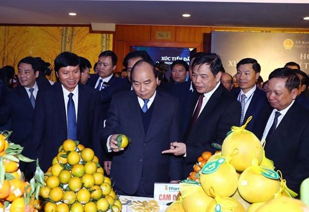 Hoa Binh signe des accords d'une valeur de plusieurs milliards de dollars hinh anh 1