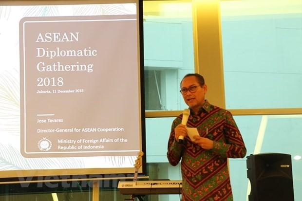 L'Indonesie met a jour ses diplomates sur les progres de l'ASEAN hinh anh 1