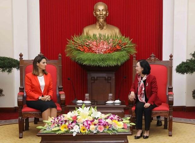 Une delegation du Parti du nouvel Azerbaidjan en visite au Vietnam hinh anh 1