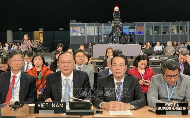 COP24 : Le Vietnam œuvre a l'application de l'Accord de Paris hinh anh 1