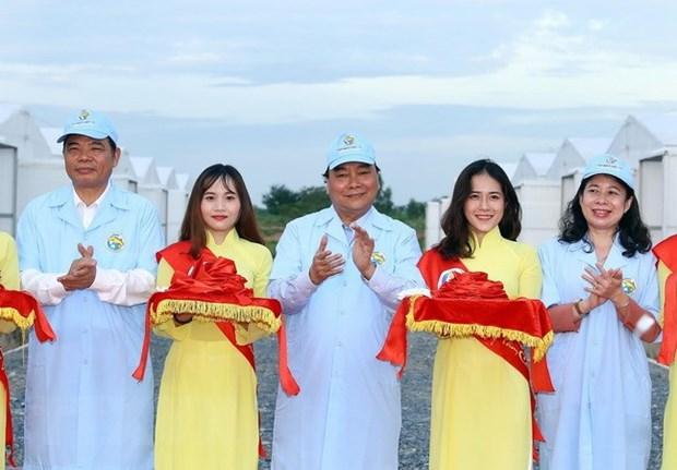 Le Premier ministre visite une zone de pangasius reproducteurs a An Giang hinh anh 1